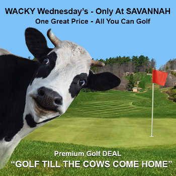 Wacky Wednesday - Only at Savannah Links