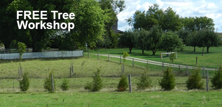 Attend A FREE Managing Trees Workshop With GRCA